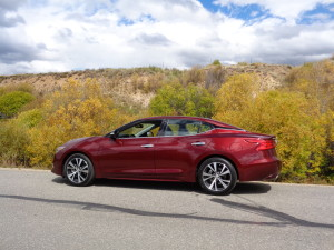 Fall foliage backdrop in high country brings out best of 2016 Nissan Maxima Platinum sedan. (Bud Wells photo)